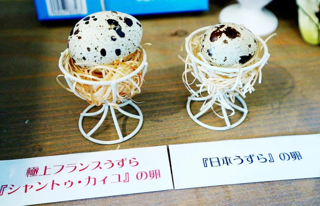 日本うずらの大きさの2倍!「シャントゥ・カイユ」の卵を取り扱っているのは、日本でここだけ!